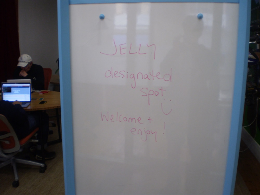 Jelly Coworking Hub Adelaide